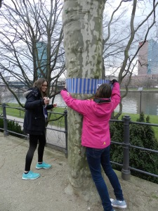 Manche Bäume waren schon sehr dick! Foto: Lucien Kirchner